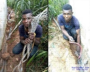 Find Out What a Man Said After Being Caught Stealing Cables Meant for Light Up Lagos Project